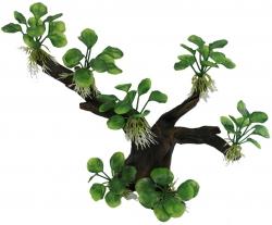Искусственные коряги, дерево бонсай