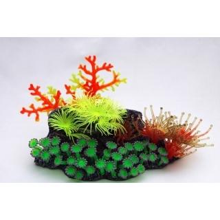 """Грот""""Коралловый риф"""""""