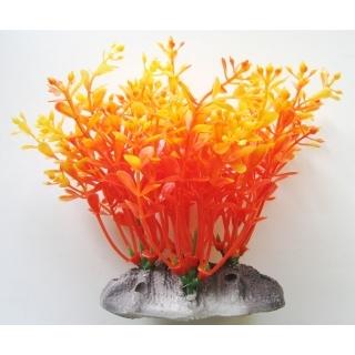 Аквариумное растение 12 см