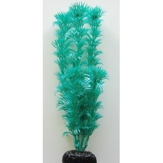 Кабомба зелёная 10 см