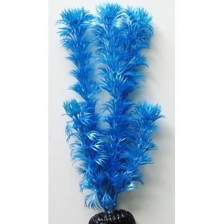 Кабомба синий металик 30 см