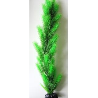 Перестолистник зеленый 50 см