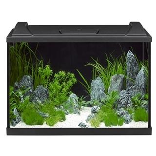 Аквариум EHEIM aquapro LED 84 л, чёрный
