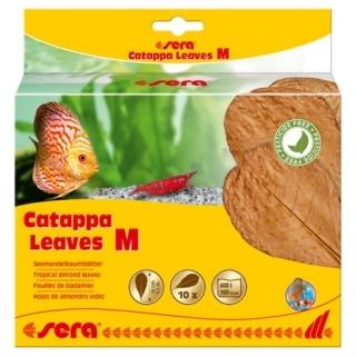 SERA Catappa Leaves M Листья индийского миндаля