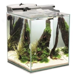 Аквариум Aquael Shrimp Set Duo 35 белый, 49 литров