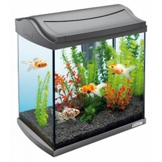 Tetra AquaArt LED Goldfish аквариум на 30 литров