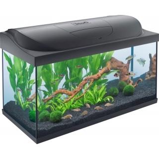 Tetra Starter Line Tank LED black 105 литров